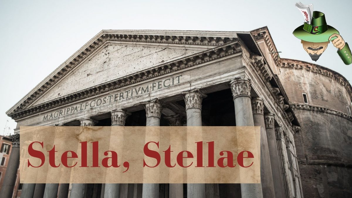 Stella, stellae